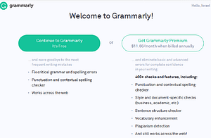 Grammarly Application